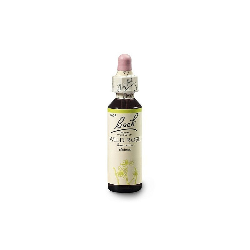 Bach® Wild Rose 20ml